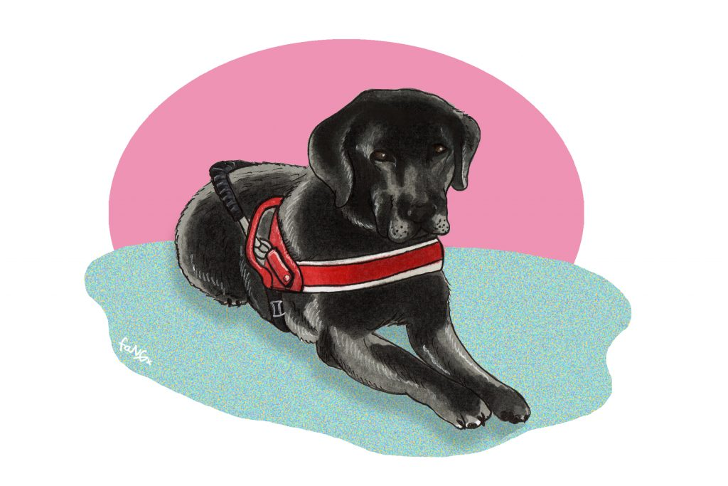 An illustration of Pinky's dog,
